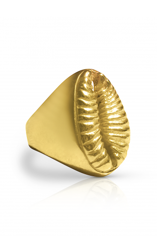COWRIE SIGNET RING